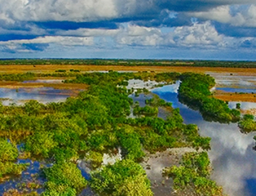 FKFGA letter to Congresswoman Mucarsel-Powell supporting her assignment to implement Everglades Restoration subcommittees
